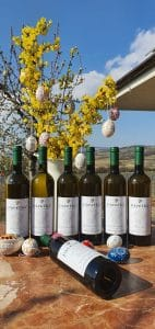 degustacny set bielych vin pavelka