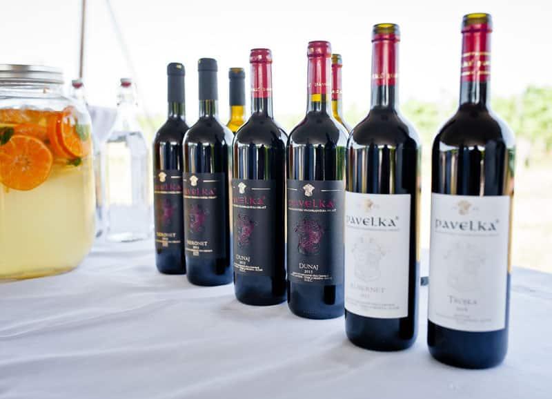 vinarstvo pavelka